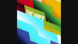 The Knife - You Make Me Like Charity (Deep Cuts 11)