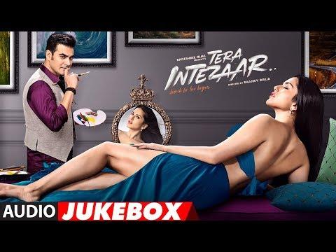 Tera Intezaar Full Album | Audio Jukebox | Sunny Leone | Arbaaz Khan thumbnail
