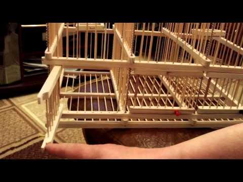 Западок для птиц своими руками 29