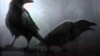Vídeo 33 de Árbol