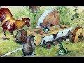 РАЗНЫЕ КОЛЕСА сказка В Сутеева АУДИОСКАЗКА слушать смотреть мультик диафильм mp3