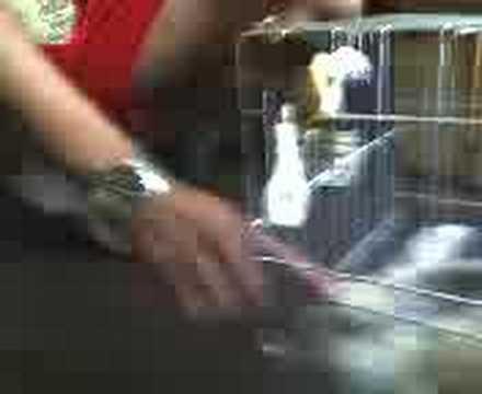 Conejito video