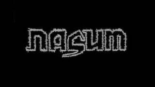 Watch Nasum Between The Walls video