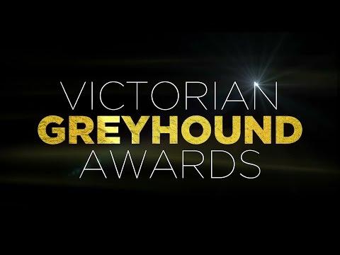 Ned Bryant 'Silver Fox' Award: Gerard O'Keeffe