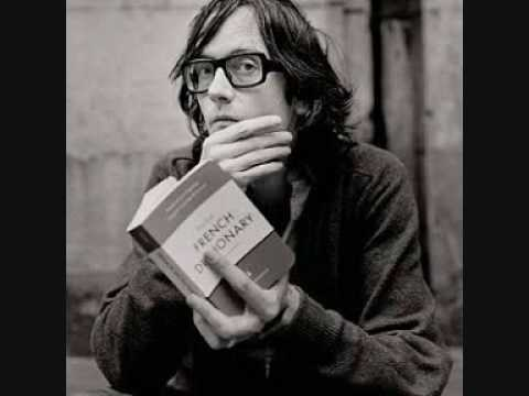 I Never Said I Was Deep - Jarvis Cocker