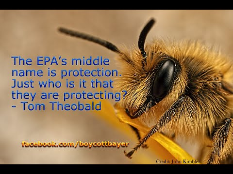 Is EPA New Internship For Industry, Japanese Honeybees & Open Letter Impact