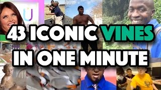 43 Iconic Vines in One Minute (Music Video)
