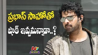 International Dancers Roped in for a Song Sequence with Prabhas in Saaho   NTV