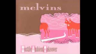 Watch Melvins Foaming video