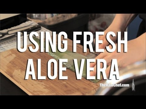 The Raw Chef TV | Using fresh aloe vera in your raw food recipes