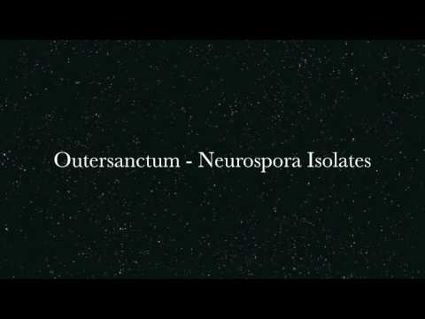 Outersanctum - Neurospora Isolates