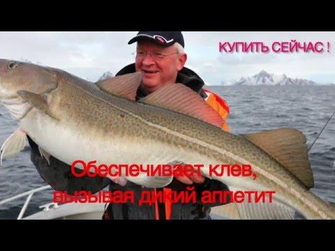 погода в когалыме клев рыбы