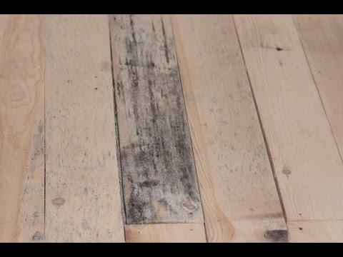 Как выбрать антисептик для древесины – огнезащита, биозащита, отбеливающие средства и пропитки.