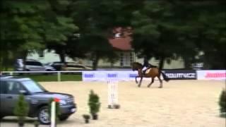 FOR SALE - Rebelka - *2004,mare by Landprinz,1,30m jumper for junior or AM,www.salesporthorses.com