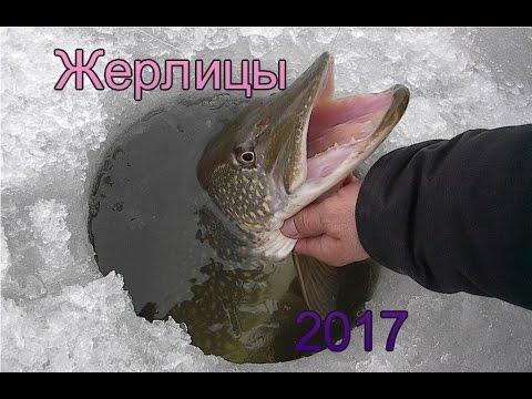 запрет рыбалки 2017г вуокса