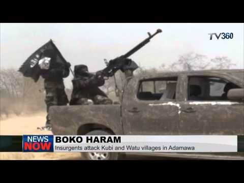 Boko Haram attack Adamawa villages, razes down houses