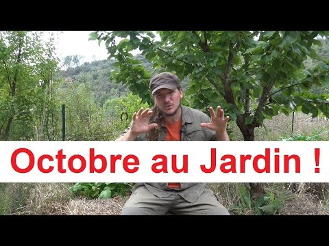 que faire au jardin en octobre permaculture agro cologie etc. Black Bedroom Furniture Sets. Home Design Ideas