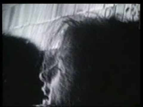Caifanes - La Negra Tomasa Video