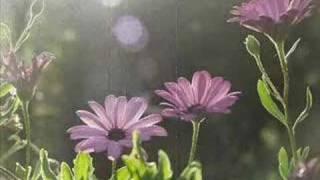 Vídeo 12 de Hymn
