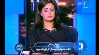 برنامج مصر فى يوم| وفاة الشمبانزي