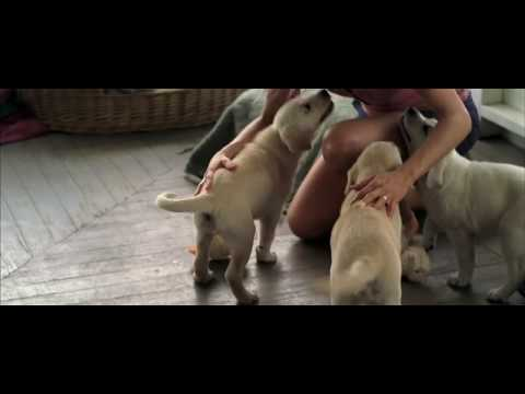 Exclusive Marley And Me (on The Set) Trailer 720p Widescreen video
