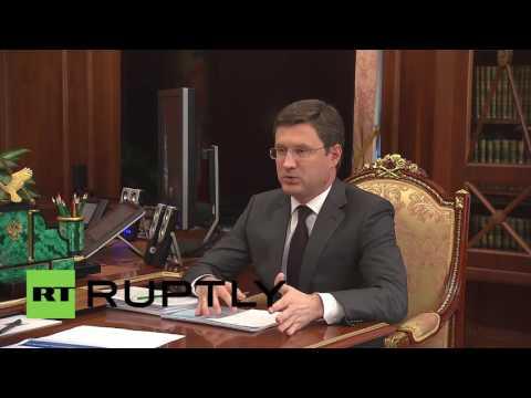 Russia: Russian energy firms 'cope well' on global markets, Novak tells Putin