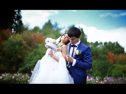 Эльвин + Илаха ( AZERI SUPER TOY WEDDING, Азербайджанская свадьба )