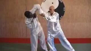 Taiji quan yang style 108 application