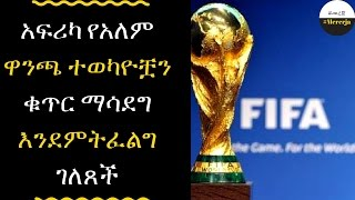ETHIOPIA - The CAF has an interestto increase the number of countries at the World Cup