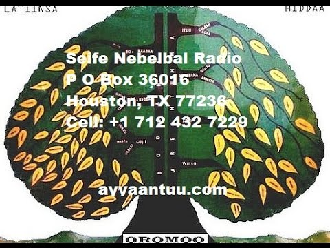Seife Nebelbal Radio on Ethiopian Christians Massacre in Libya