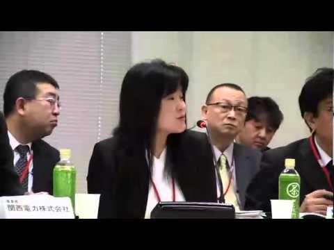 第19回発電用軽水型原子炉の新安全基準に関する検討チーム