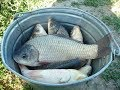 Супер рыболовная  насадка --ЗЯБРА--- Клюет всё что движется.