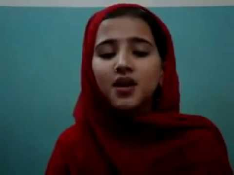 2{pashto New Singer Dil Raj  Sweet Tapay } Form Chamkani Musafer video
