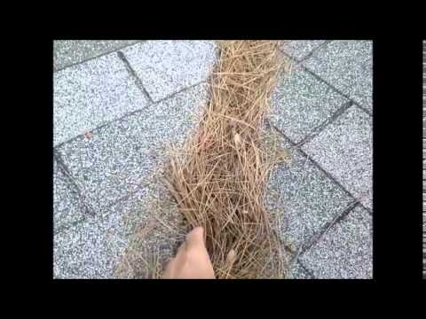 02 07 2015 Reseda Roof and How to Turn off Utilities