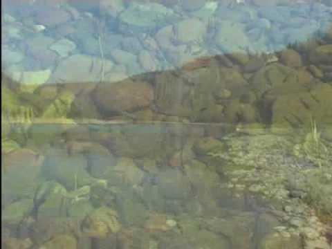 Горная Башкирия. Ритмы живой природы.