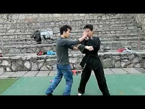 Bruce Lee's JKD Techniques/截拳道/JEET KUNE DO Image 1