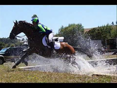 Horse Riding Cross Country and Show Jumping …Gone Wrong #2
