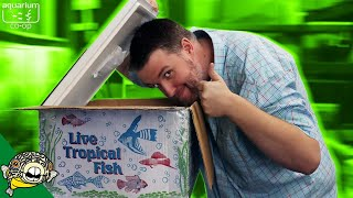 TROPICAL FISH UNBOXING. SOME OF THESE ARE COMING HOME!