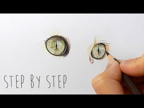 Draw With Me | How to draw cat eyes with colored pencils step by step | Emmy Kalia