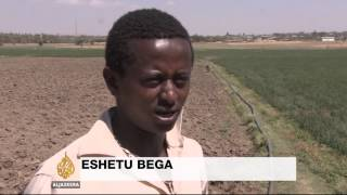 Drought takes terrible toll in Ethiopia