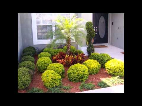 Wonderful Landscape Design Ideas Florida with Tropical Front Yard Pictures