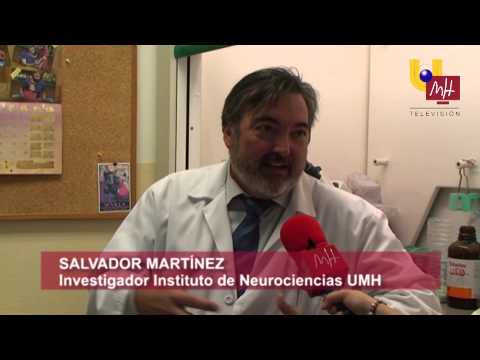 UMH TV - INVESTIGACION SOBRE ELA DEL INSTITUTO DE NEUROCIENCIAS