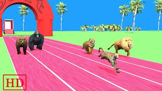 Animals Race for kids | Wild Animals Racing | Zoo Animals Race | Animals names and sounds