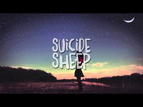 Sir Sly - You Haunt Me (Salda Remix)