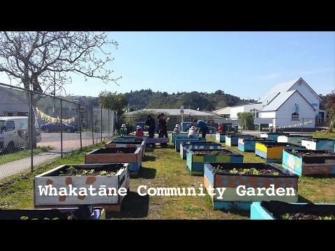 WHAKATANE Community Garden New Zealand