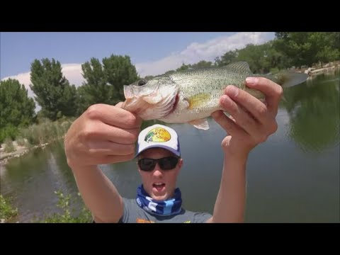 Tingley Bass Tournament 2   Getting Kicked out    New Mexico Bass fishing   Urban Fishing