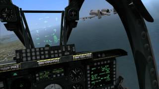 DCS: A-10C - Rob has a birdstrike.