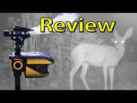 My Review: Scarecrow Motion Activated Sprinkler - Wildlife Deterrent
