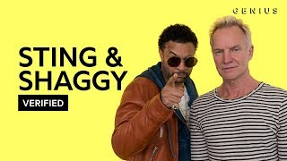 Sting Shaggy 34 Morning Is Coming 34 Official Meaning Verified
