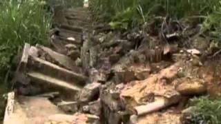 Série de reportagens do Jornal Nacional sobre o Código Florestal - 25 a 29/04/2011